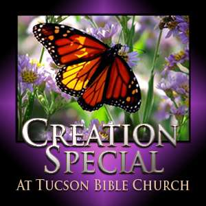 Creation Special at Tucson Bible Church (2010)